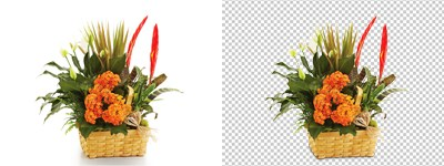 Photoshop Background remover
